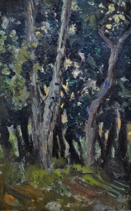 Bosco, 1926