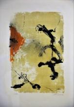 Acrobati di pensieri, 1964
