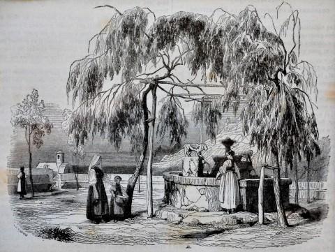 Una fontana di Amalfi